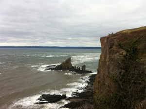 View at Cape Split