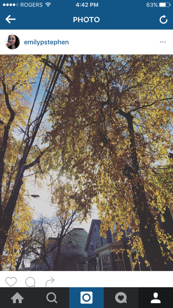 A photo I shared on Instagram from a noontime run in the fall.